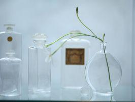 Coty Perfume Bottles
