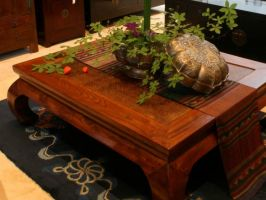 Large Table with Rattan Top
